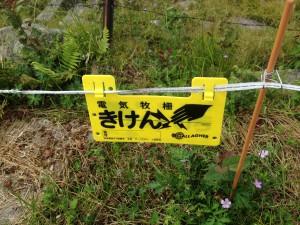 美ヶ原 牛伏山に向かう途中の歩道にある電気柵